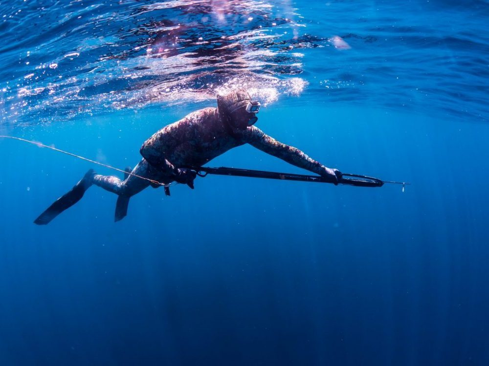 Freediving and Spearfishing Course