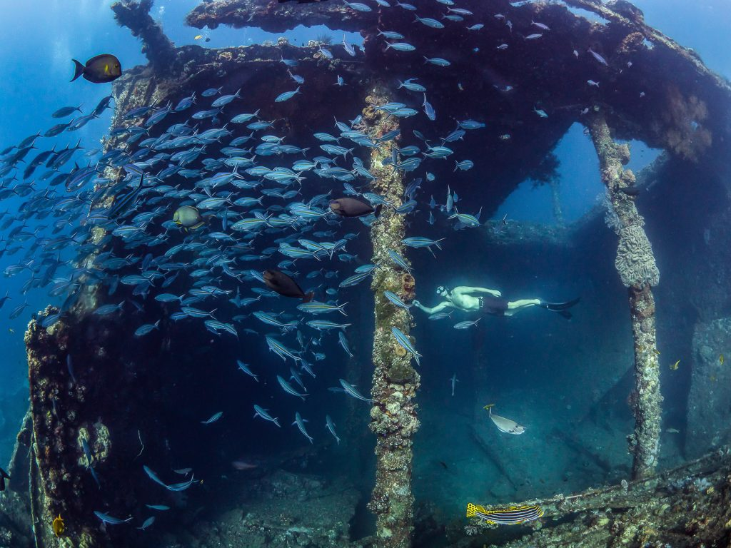 Freediving with fish on the Liberty shipwreck in Bali Indonesia.