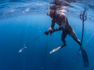 Spearfishing course in Amed Bali